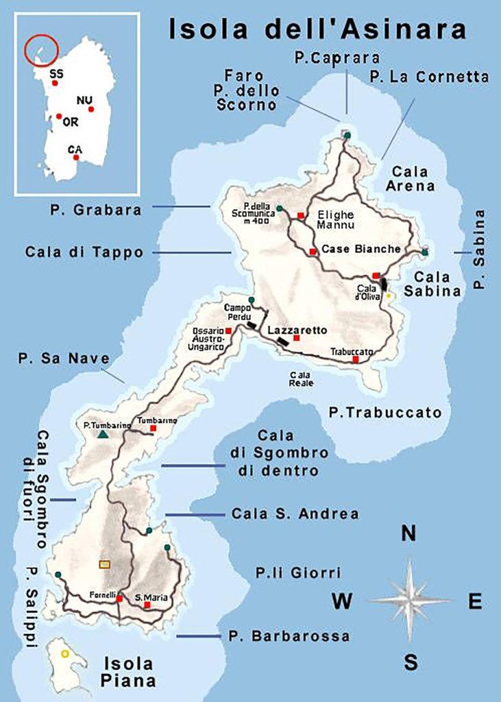 Cartina Sardegna Asinara.Isola Asinara Come Arrivare Dalla Sardegna Tripinworld