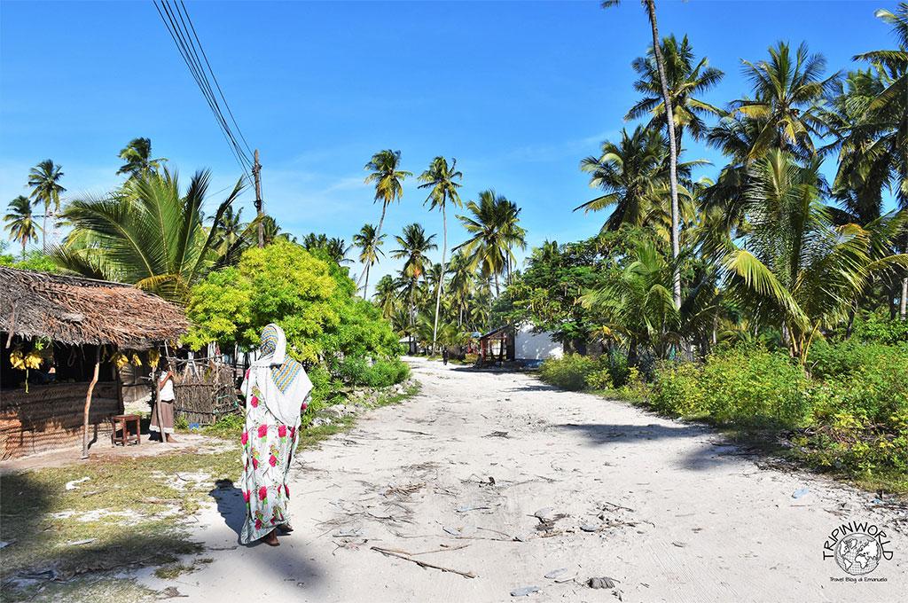 Zanzibar Guida Turistica: tutte le informazioni - TRIPINWORLD